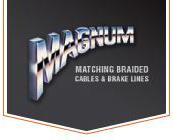 magnum shielding
